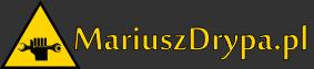 Naprawa mostów napędowych i dyferencjałów - Mariusz Drypa